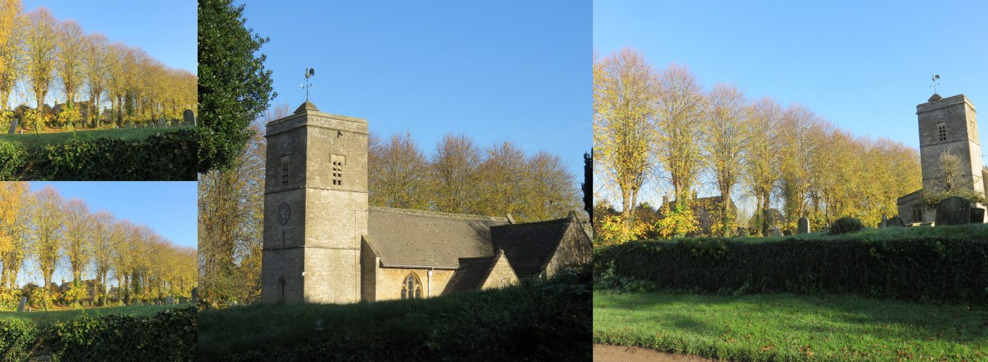 Ascott Church Trees November 2015 (Elaine Byles)